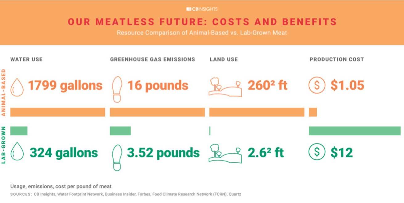 Cbs insight meatless future